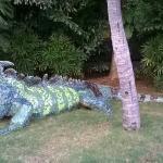 Lizard in the grass