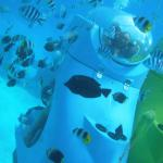 Bora Bora Aquabike Feb 2015