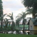 View over banana farms