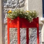 des fleurs et la façade