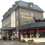 Hotel Bergesbuer