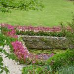 looking down the the main pool in the walled garden...Bergenia's galore !
