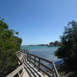 One of the many lovely boardwalks at Leffis Key