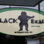 Black bear logo