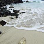 Josiah's Beach