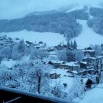 Photo de Hotel Le Grand Tetras
