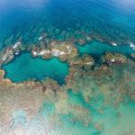 #bluehole #coralreef #shacksbeach #isabelapr #villatropical #vacationhomerental #dive #snorkel #