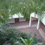 Atrium mit tollen Planzen bewachsen