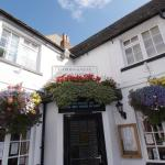 The front of the Swan in flower!