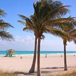 Hotel Indigo Miami Dadeland - Miami Beach