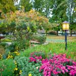 Golden Key Auburn, CA Lawn & Gardens