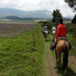 Ecua Horse Rides - Day Rides