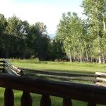 view from cabin porch - so peaceful!