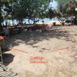 yard from room to restaurant and beach: dirty sand and garbage everywhere