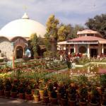 Garden inside ShantiKunj