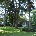 Guinea Fowl Garden