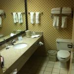 Nice-sized bathroom (1King Bed room).