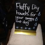 Soggy dog towels