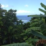 Tropical lagoon resort worst!