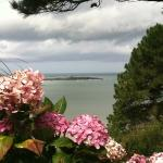 This was the view from our campsite on the English Channel. At Les Hortensias