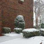 Snow at the Homewood Suites Village of Providence