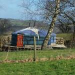 Foto de Strawberry Skys Yurts