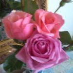 Frische Rosen auf der Kommode im Zimmer