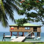 Foto di Bo Bush's Island House