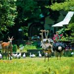 Mount Meru Game Lodge & Sanctuary