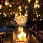 Historic Orange Grove Events Evening