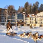 Dogsled Rides on property