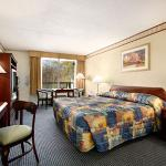Rodeway Inn & Suites - New Hope