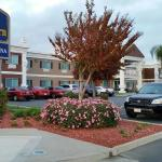 Photo of Best Western Americana