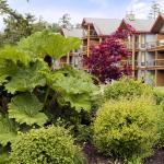 BEST WESTERN Tin Wis Resort Lodge