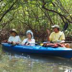 Discussing the history of the mangrove tunnels.