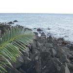 Foto de Camiguin Volcan Beach Eco Retreat & Dive Resort