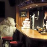 bunnys in globe inn