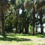 Carney Island Recreation & Conservation Area