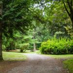 Trails and bike paths