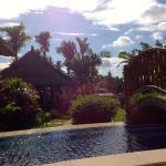 Sunbathe along the sparkling salt water pool