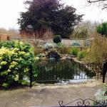 Gorgeous peaceful garden