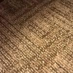 Un-vacuumed carpet