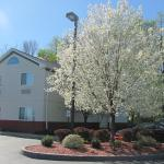 Dollinger's Inn & Suites