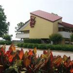Foto de Red Roof Inn - Chattanooga Airport