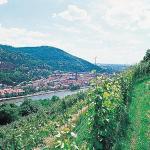 Foto di Hotel Die Hirschgasse Heidelberg