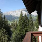 Billede af Sunstar Alpine Hotel Flims