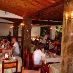 Billede af Hotel Playa Sur Tenerife