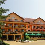 Photo of Best Western Silva Hotel