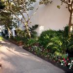 Landscaped Shaded Pet Walk Areas