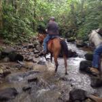 Riding through creek beds